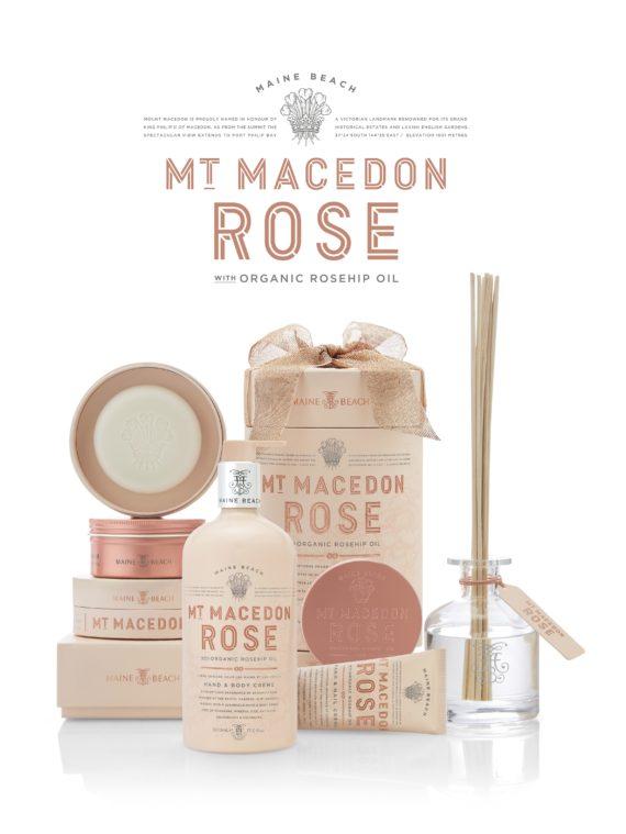 Maine Beach Rose